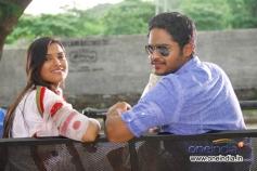 Telugu Movie Gaja Donga