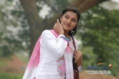 Chaitanya Nelli