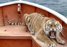 Life of Pi - Bengal tiger