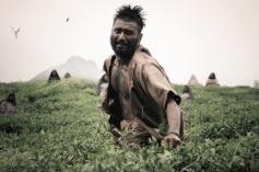 Tamil Movie Paradesi New Still