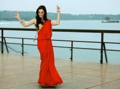 Evelyn Sharma Still From Ayushmann Khurrana