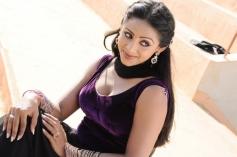 Panivizhum Nilavu Movie Actress