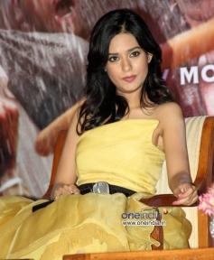 Amrita Rao at Satyagraha Film Trailer Launch