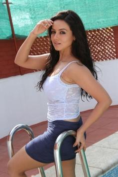 Sana Khan in Telugu Movie Gajjala Gurram
