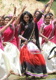 Actress Karthika Nair in Brindavana