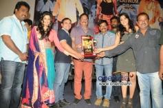 Chandi Platinum Disc Function
