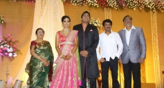 Cheran at TG Thyagarajan son Senthil Dhasha Wedding Reception