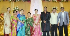 Saranya, Ponvannan at TG Thyagarajan son Senthil Dhasha Wedding Reception