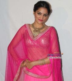 Sukrutha at Movie Jatta Audio Release