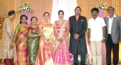 Preetha, Hari at TG Thyagarajan son Senthil Dhasha Wedding Reception