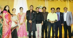 Vijay Adhiraj, TG Thyagarajan son Senthil Dhasha Wedding Reception