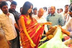 Amala Paul Inaugurates Kalanikethan Showroom Gallery