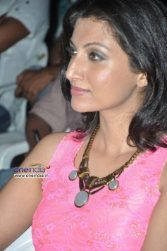 Hamsa Nandini at Bhai Triple Platinum Disc Function
