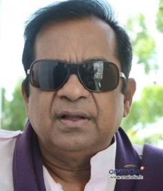 Brahmanandam at Movie Malligadu Marriage Bureau Press Meet