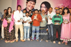 Jananam Film Audio Release