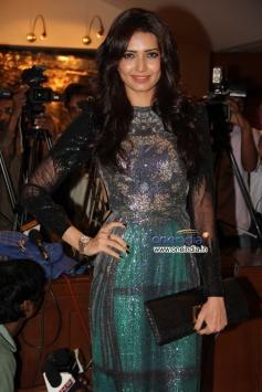 Karishma Tanna poses at Success party of film Grand Masti