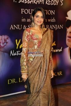 Madhoo at Yash Chopra Memorial Awards 2013