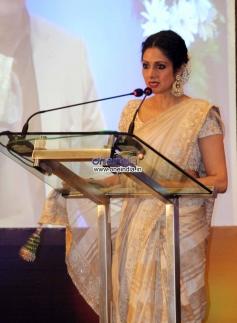 Sridevi Kapoor addressing media at Yash Chopra Memorial Awards 2013