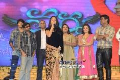 Telugu Movie Varna Audio Launch Stills