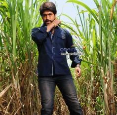Yash in Kannada Movie Raja Huli