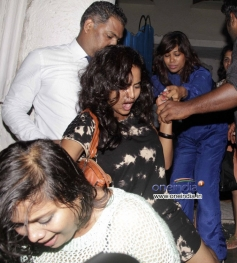 Celebs arrive at the Finding Fanny Fernandez completion party