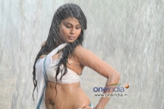 Mansi in Kannada Movie Jaali Baaru Mattu Poli Hudugaru
