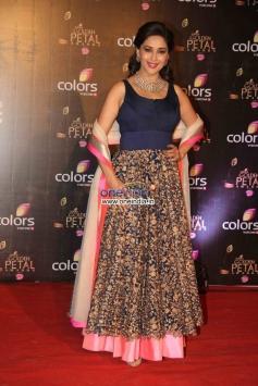Madhuri Dixit at Colors Tv 3rd Golden Petal Awards 2013
