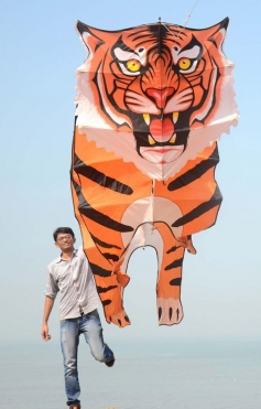 A participant flying his kite during the 26th edition of International Kite festival