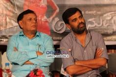 Amanusha Kannada Movie Audio Release