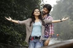 Amoolya and Yash in Kannada Movie Gajakesari
