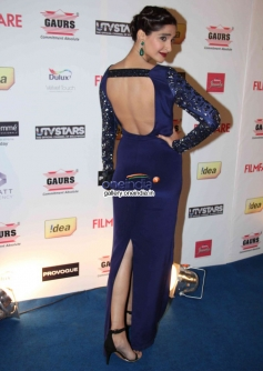 Sonam Kapoor bareback pose at the Filmfare Pre Awards Nominations Party 2014