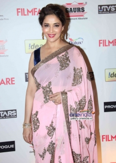 Madhuri Dixit at the Filmfare Pre Awards Nominations Party 2014