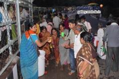 Pilgrims at Tirupati - Vaikunta Ekadasi Celebration 2014