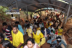 Vaikunta Ekadasi Celebration 2014 - Tirupati