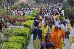 Vaikunta Ekadasi Celebration 2014