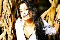 Atishri Sarkar in Kannada Movie Fashion