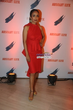 Suchitra Pillai at Absolut Elyx Party