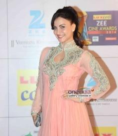 Elli Avram at Zee Cine Awards 2014