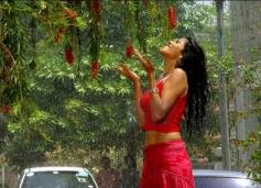 Genelia Sizzling in Rain