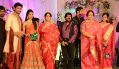 Nalini at T Rajendar Daughter Ilakiya Wedding Reception