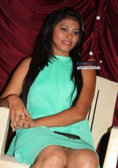 Pavana at Typical Kailas Movie Press Meet