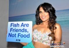 Richa Chadda as a mermaid during PETA's vegetarian ad shoot