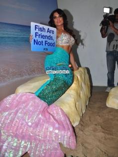 Richa Chadda as a Mermaid at Peta's Ad Shoot