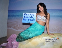 Richa Chadda at Peta shoot as a mermaid