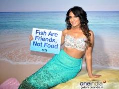 Richa Chadda's photo shoot for PETA