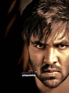 Rowdy First Look