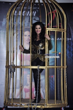 Sunny Leone to perform cage dance on launch of Baby Doll song