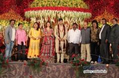 V. Harikrishna, Vaani Harikrishna at SV Babu son Sanjay Babu marriage reception with Soundarya