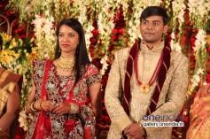 SV Babu son Sanjay Babu marriage reception with Soundarya