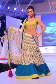 Catherine Tresa in Traditional wear